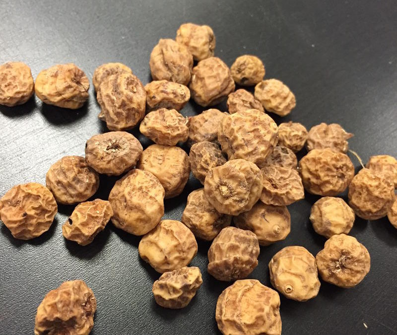 What are Tiger Nuts?